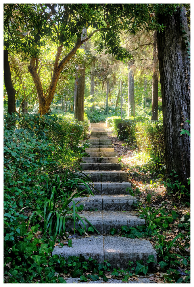 Stairs on the garden by Joao Pingo