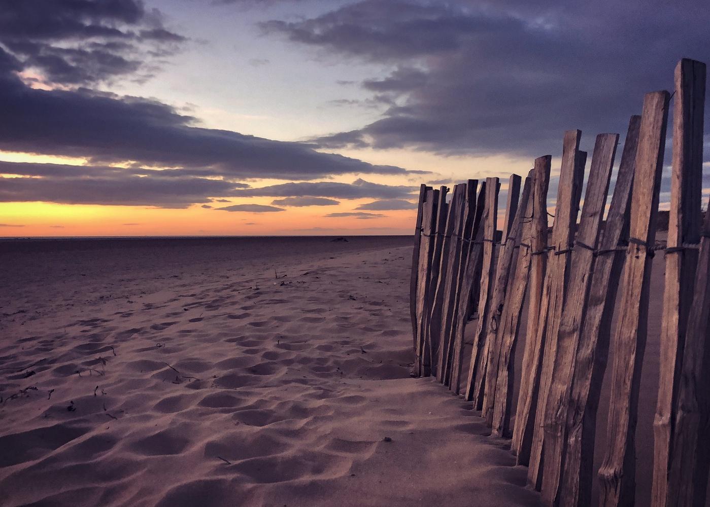 Fence by Sue DeNym