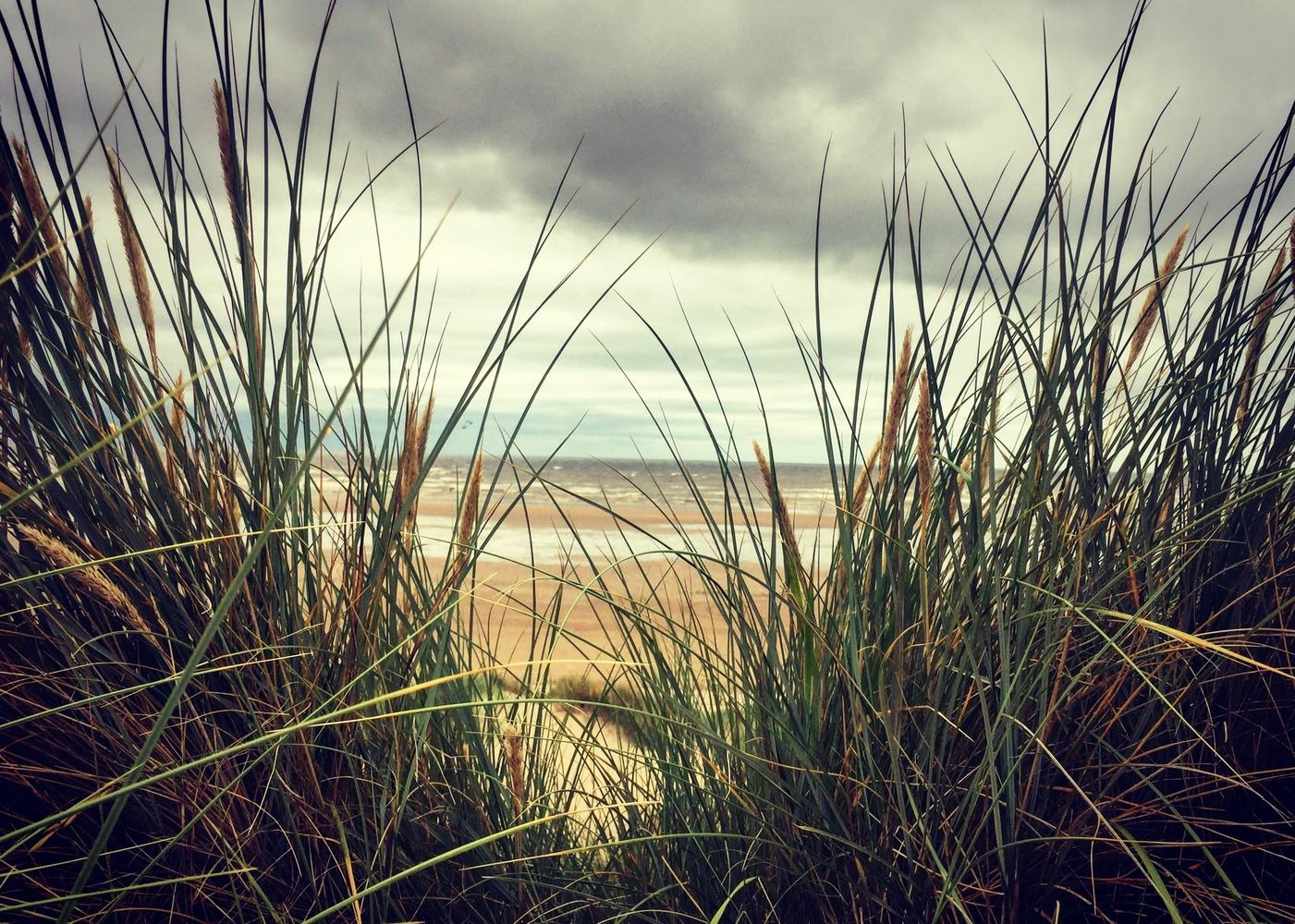Sea Peek by Sue DeNym