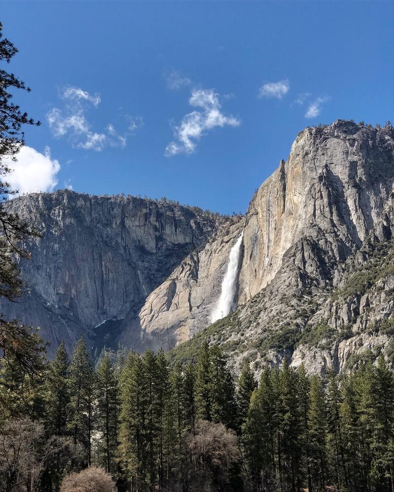 Yosemite by Sue DeNym