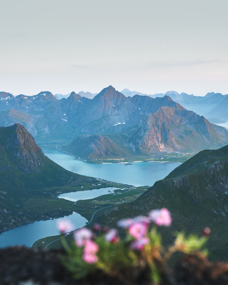 Midnight sun in Norway by Marcus Posada