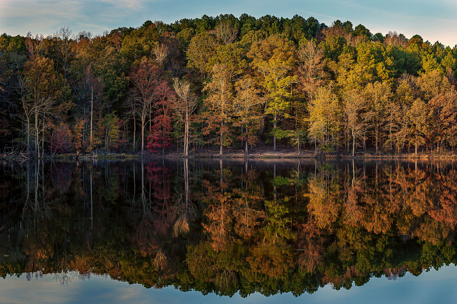 Fall Reflections by Kyle Foreman