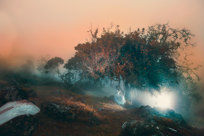 Miss Mist by Cristhian Gonzalez