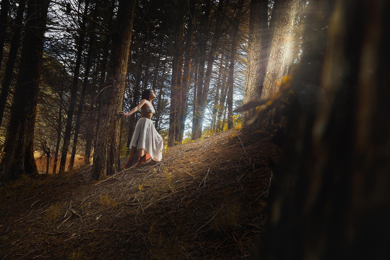 Cradle of forest  by Cristhian Gonzalez