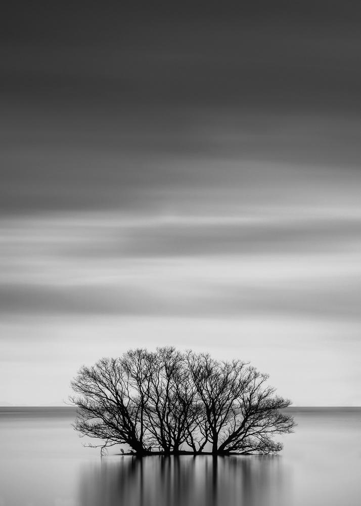 Stranded by Jordan McChesney