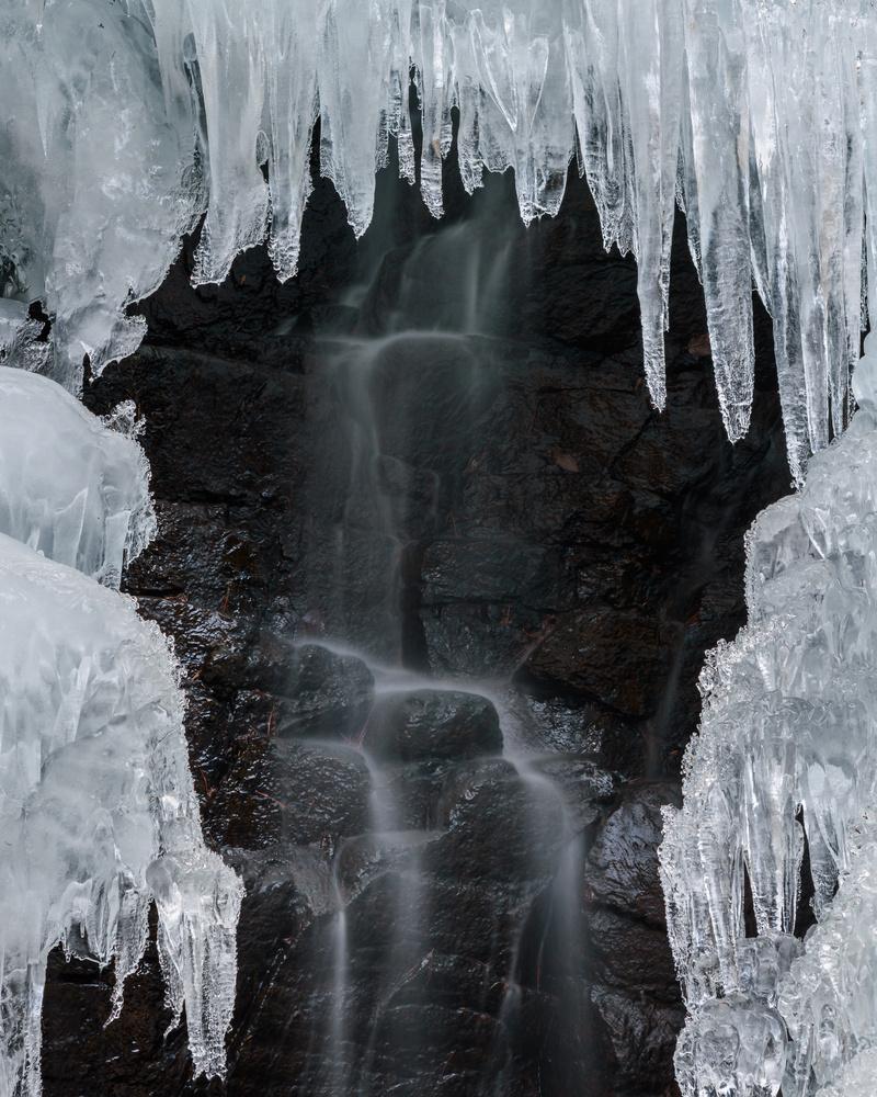 Frozen by Jordan McChesney