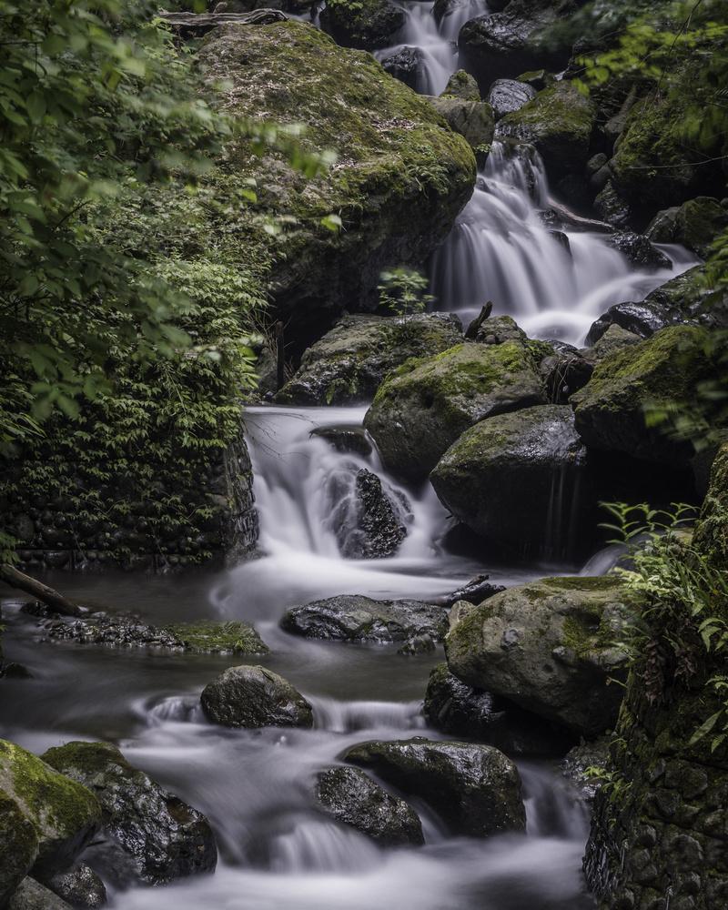 Shasui Falls by Jordan McChesney