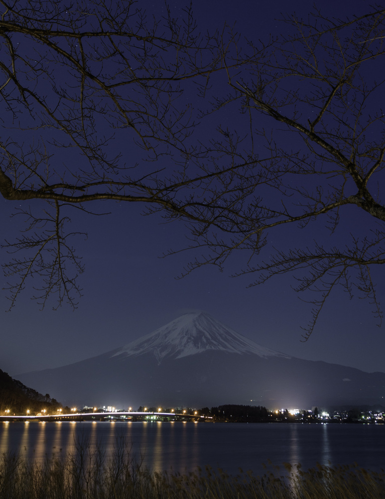 Fuji By Night by Jordan McChesney