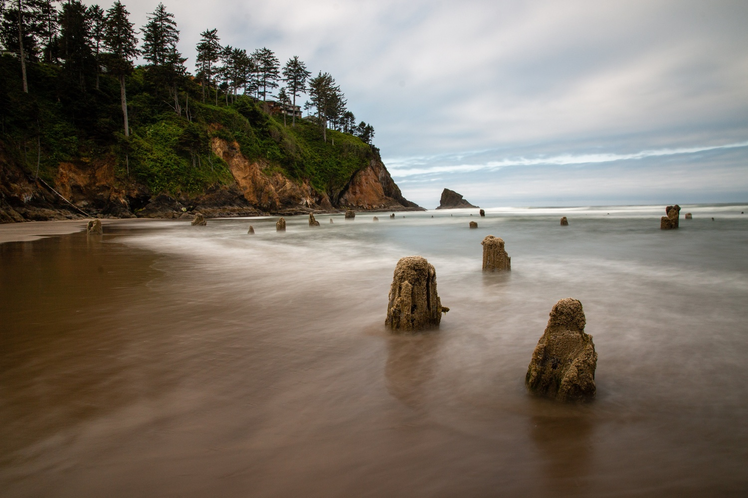 Oregon Coast by Wade Penner