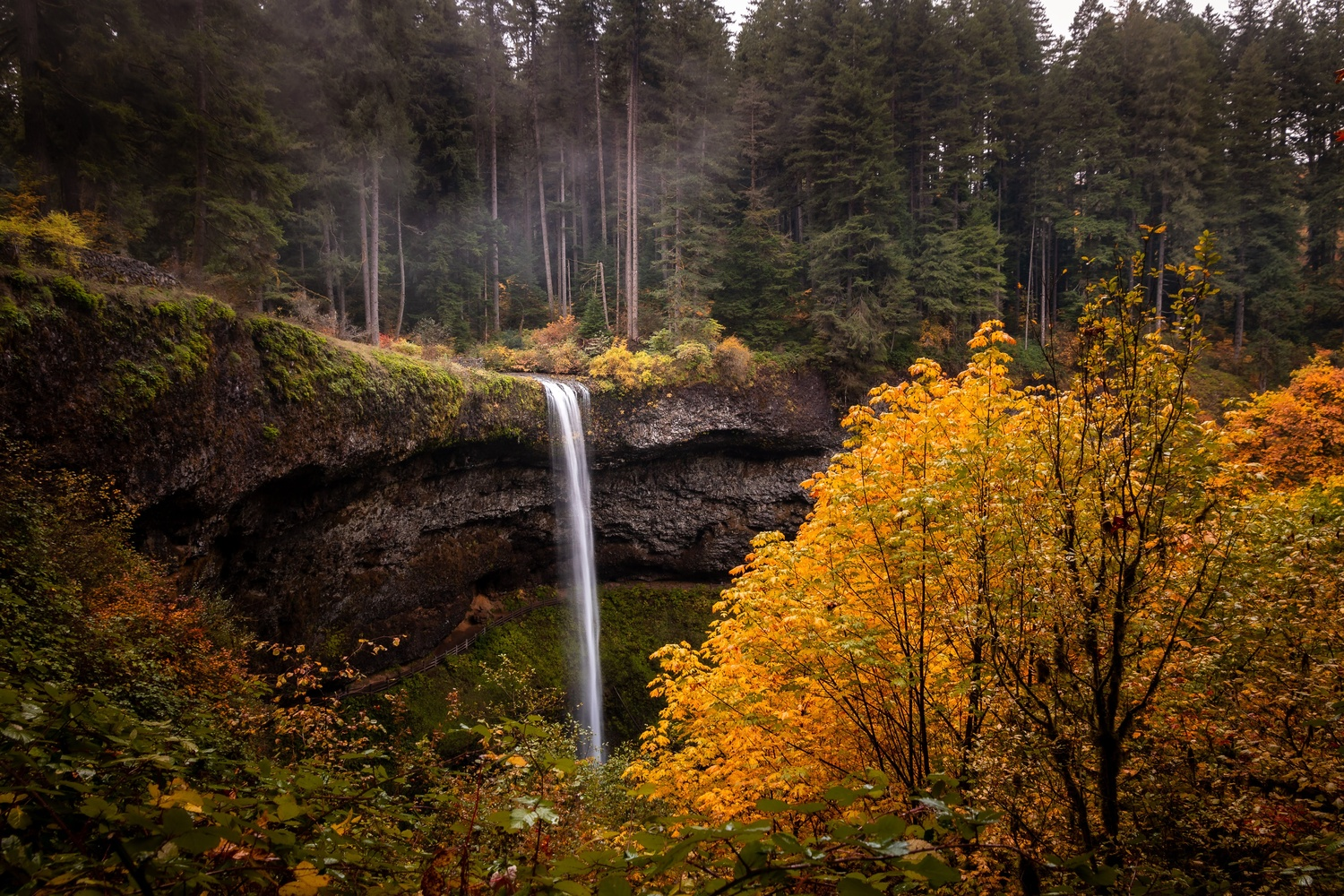 Fall in Oregon by Wade Penner