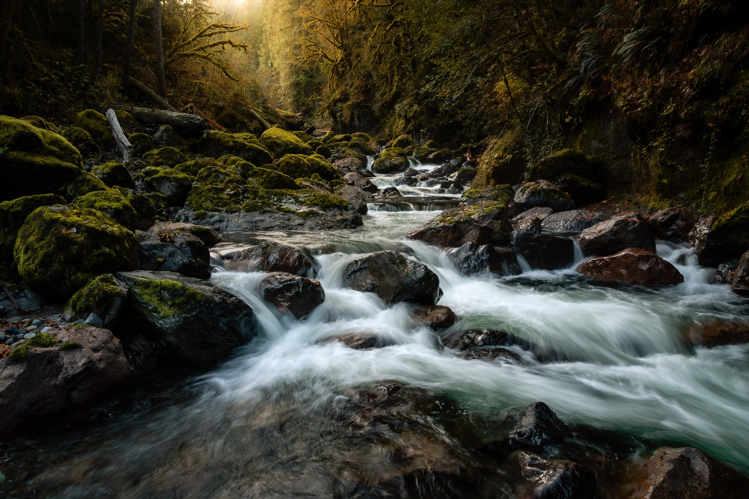Rushing Waters by Wade Penner