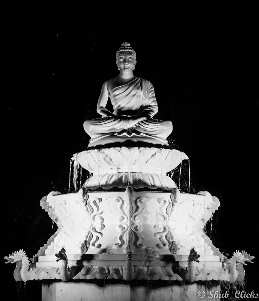 The Buddha  by Shubanker Halder