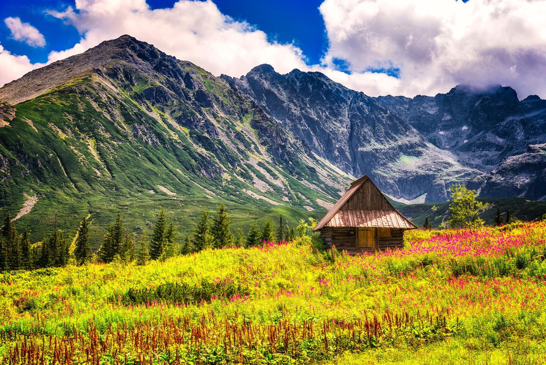 Hala Gąsienicowa cabin | Poland by Nico Trinkhaus