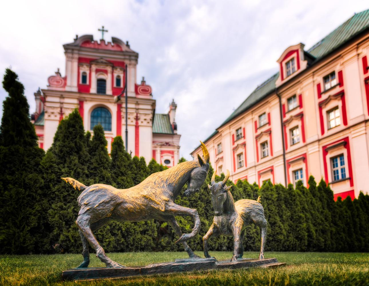 Poznan Goats | Poznan, Poland by Nico Trinkhaus