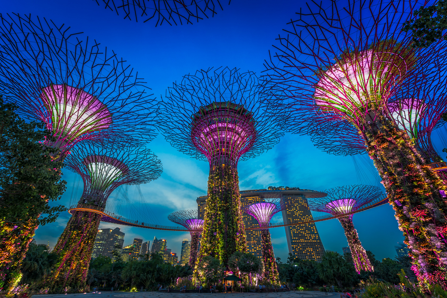 Singapore Gardens By The Bay by Nico Trinkhaus