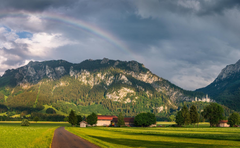 Neuschwanstein in Bavaria |Schwangau, Germany by Nico Trinkhaus