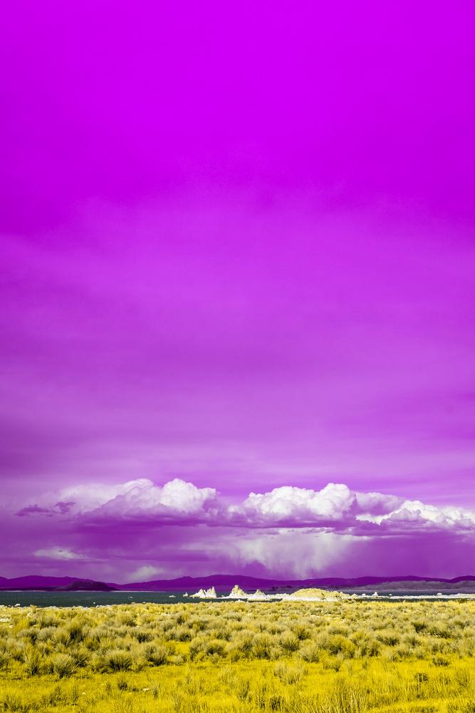 Purple Planet by Rodrigo Junqueira