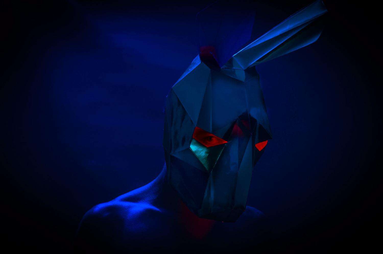 Polygonal Rabbit by Rodrigo Junqueira