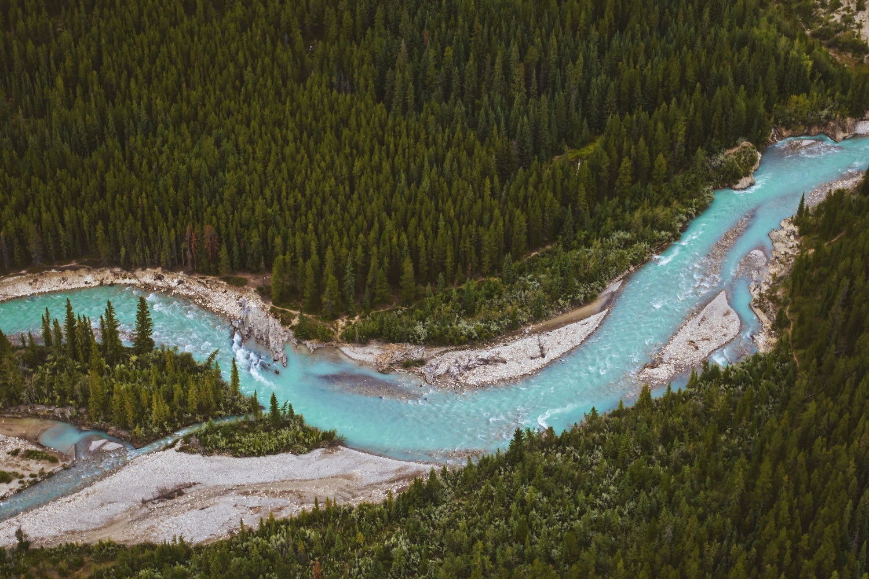 Cline River, Alberta by Lee Hanyo