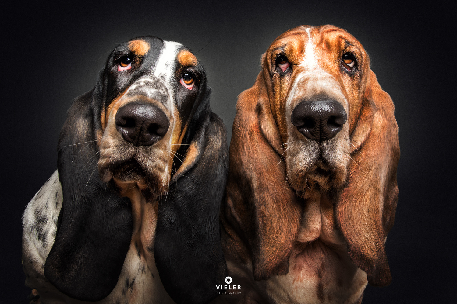 Look us in the eyes. by Christian Vieler