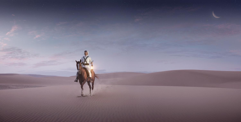 Arabian Horse by Jiří Lízler