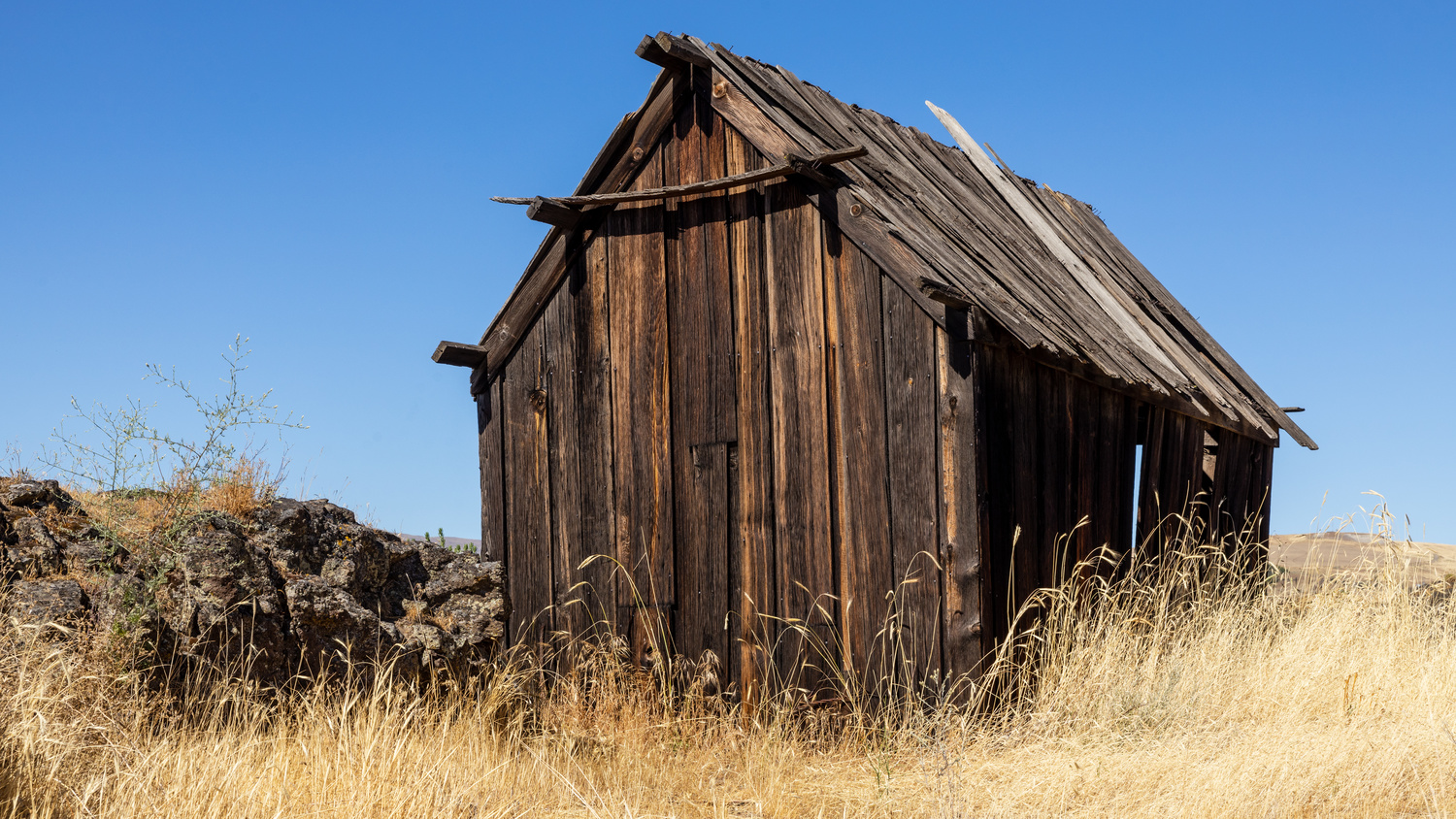 Little Shed on the Prairie by dean wilson