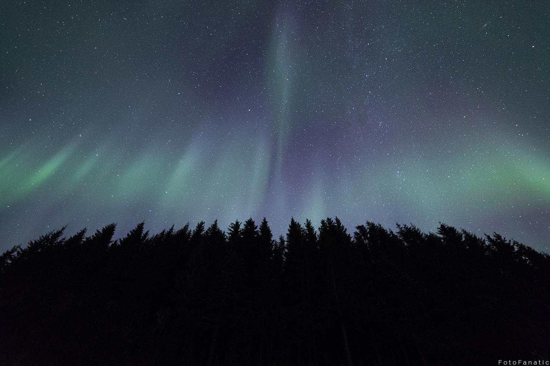 Mystic Lights by Freek van den Driesschen