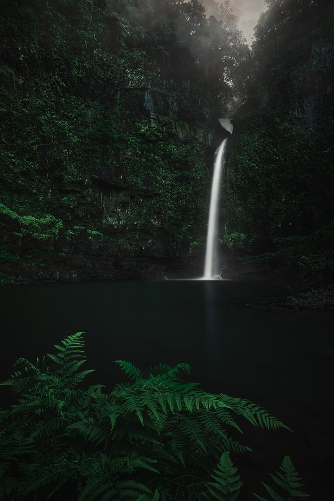 Nandroya Falls by Jose Luis Cantabrana