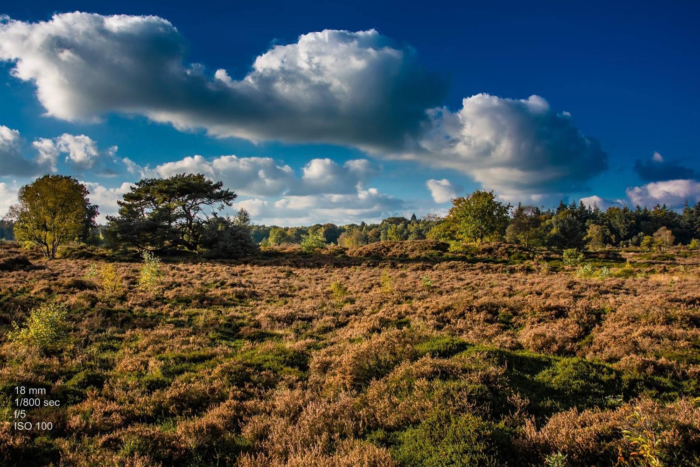 Dutch landscape by Jeroen Bleuel
