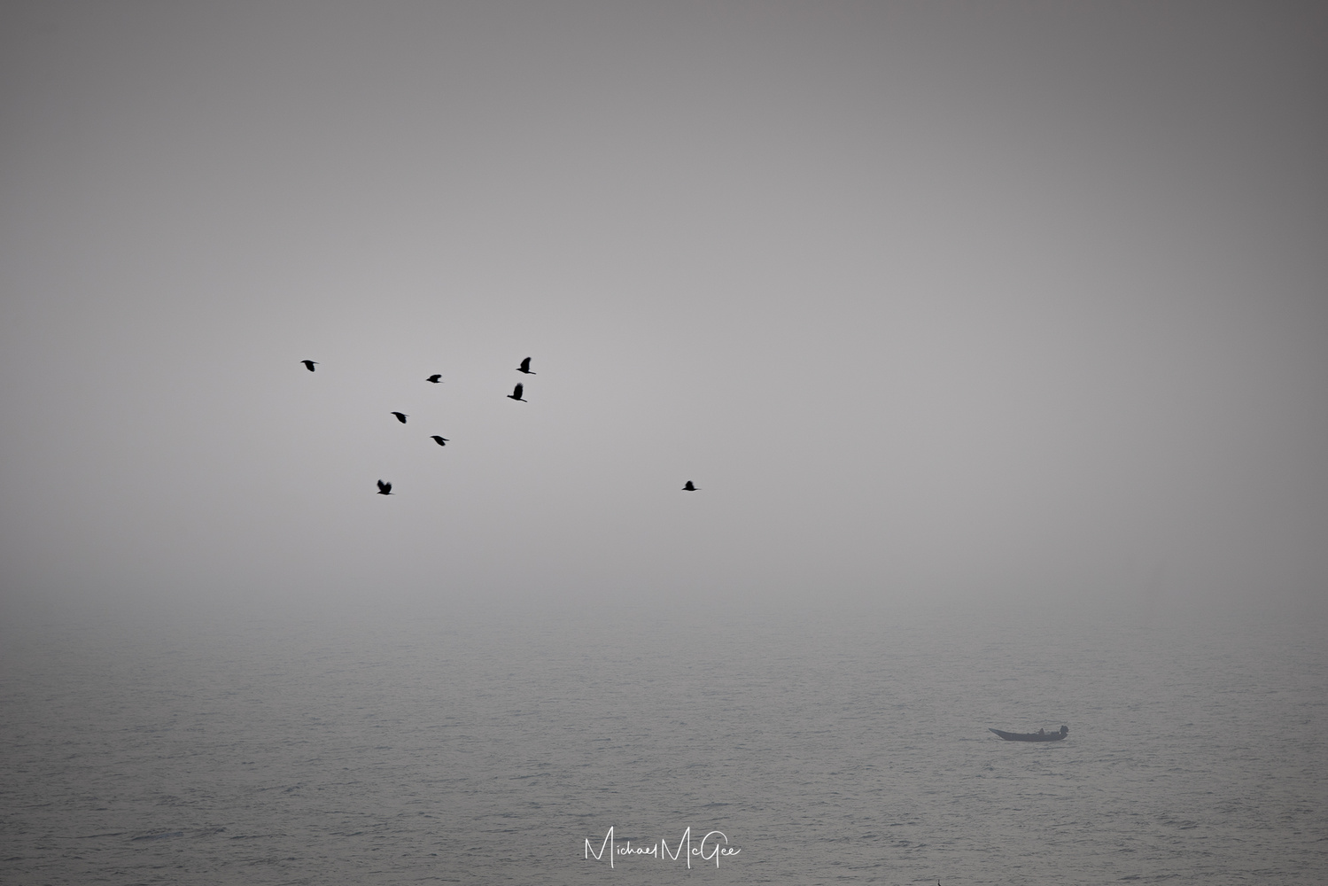 Birds and a boat by Michael McGee