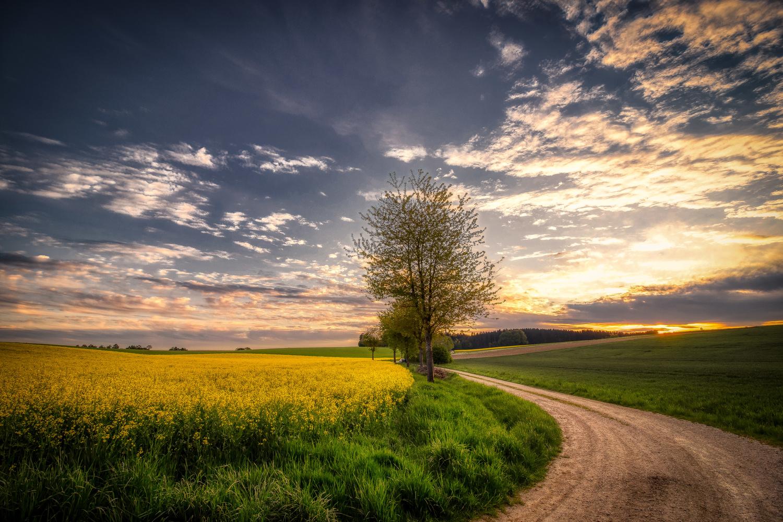 Somewhere in Bavaria II by Alex K