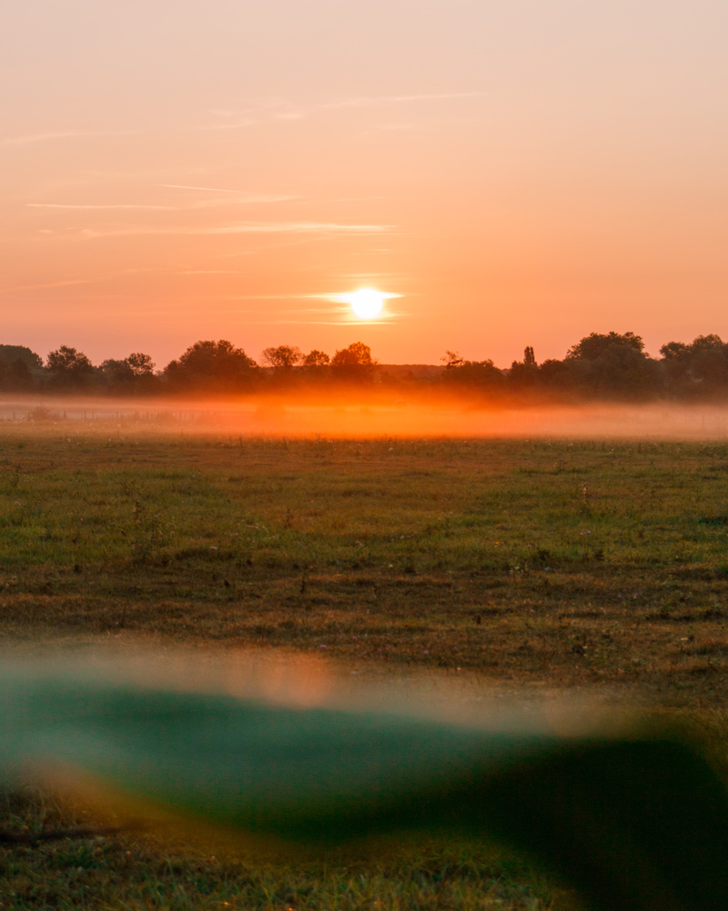 Sunrise in the french countryside by Todor Peev