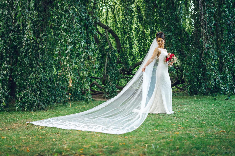 Wedding Day by Stefan Thomas