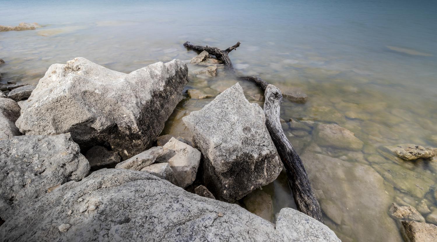 Lake Driftwood by Matt Goudreau