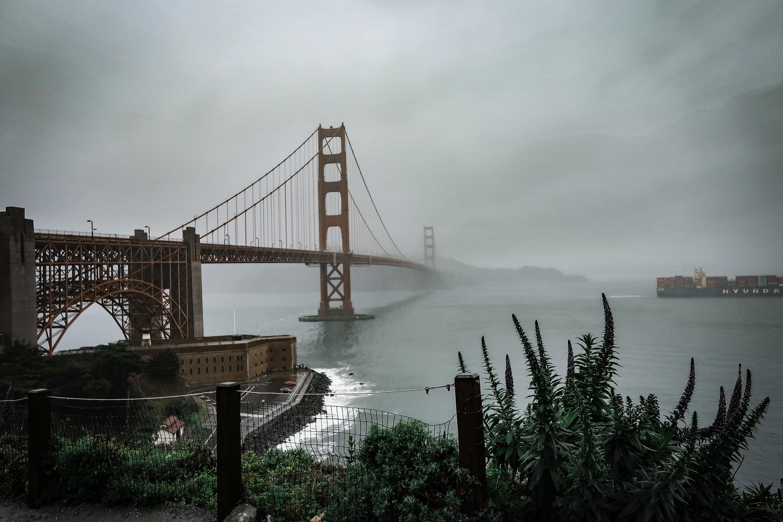Foggy Golden Gate Bridge by Matt Goudreau
