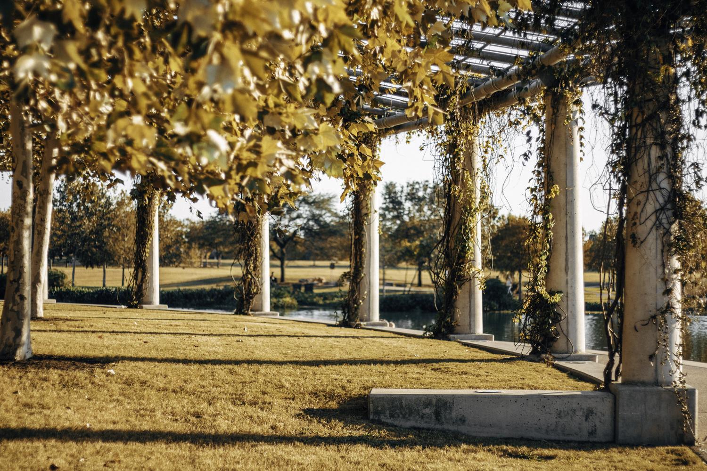 Golden Hour Park by Matt Goudreau
