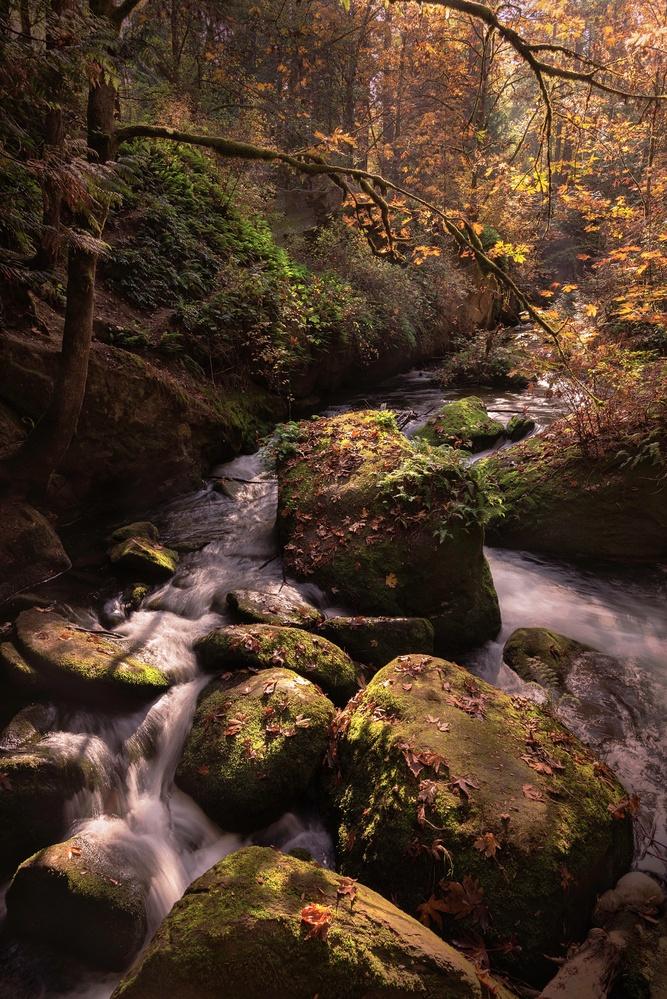 Autumn River by John Vander Ploeg