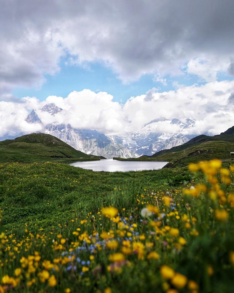 Lake Bachalpsee by Wilson Tam