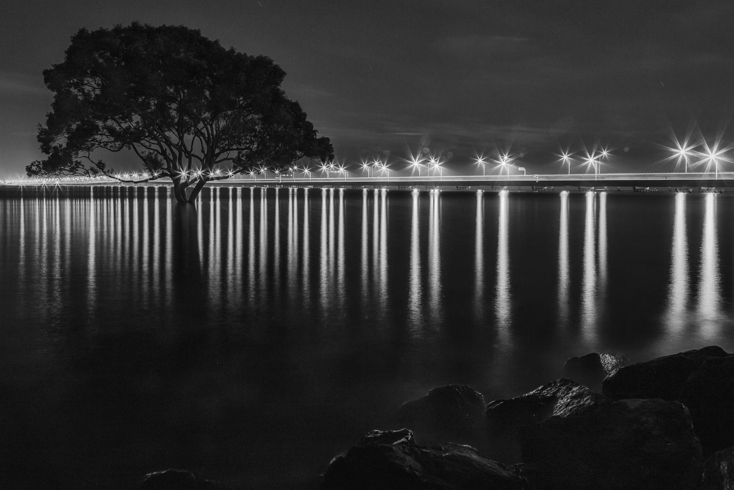 tree & bridge by Johnny Bongo