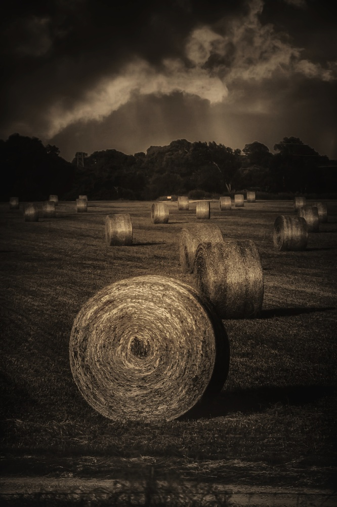 A Hay Storm by Bobby Wood