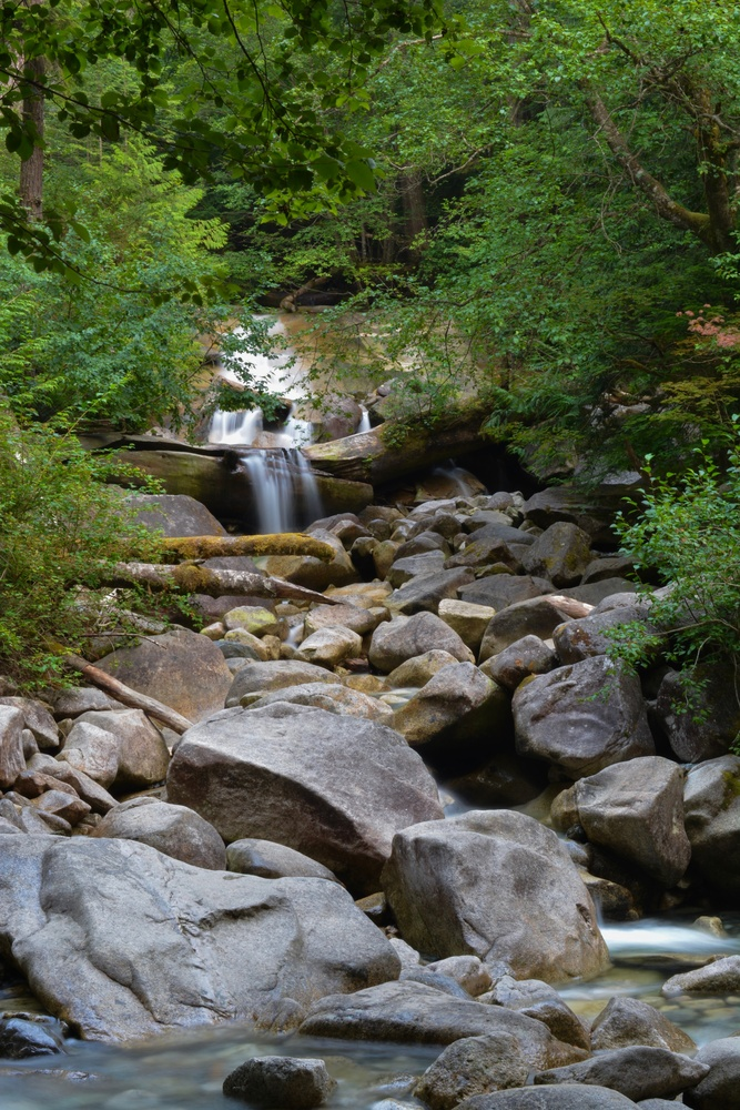 Hidden Waterfall  by Utsav Chitalia
