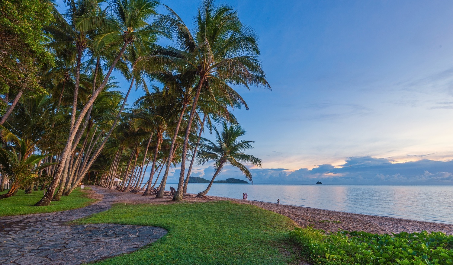 Family Photos in Palm Cove by Shane Smith