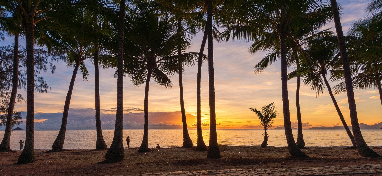 Palm Cove Sunrise by Shane Smith
