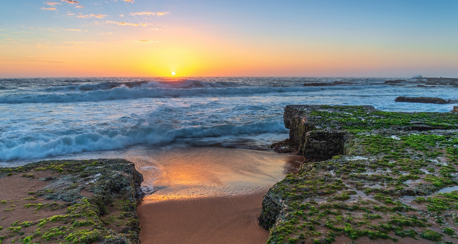 Narrabeen Sunrise by Shane Smith