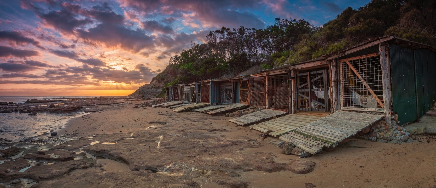 Sandon Point Boat Sheds At Sunrise #2 by Shane Smith