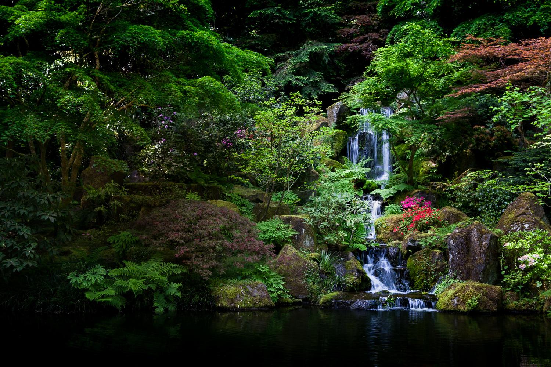 Heavenly Waterfall by Elliot Olson