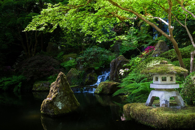 Pagoda by the Pond by Elliot Olson
