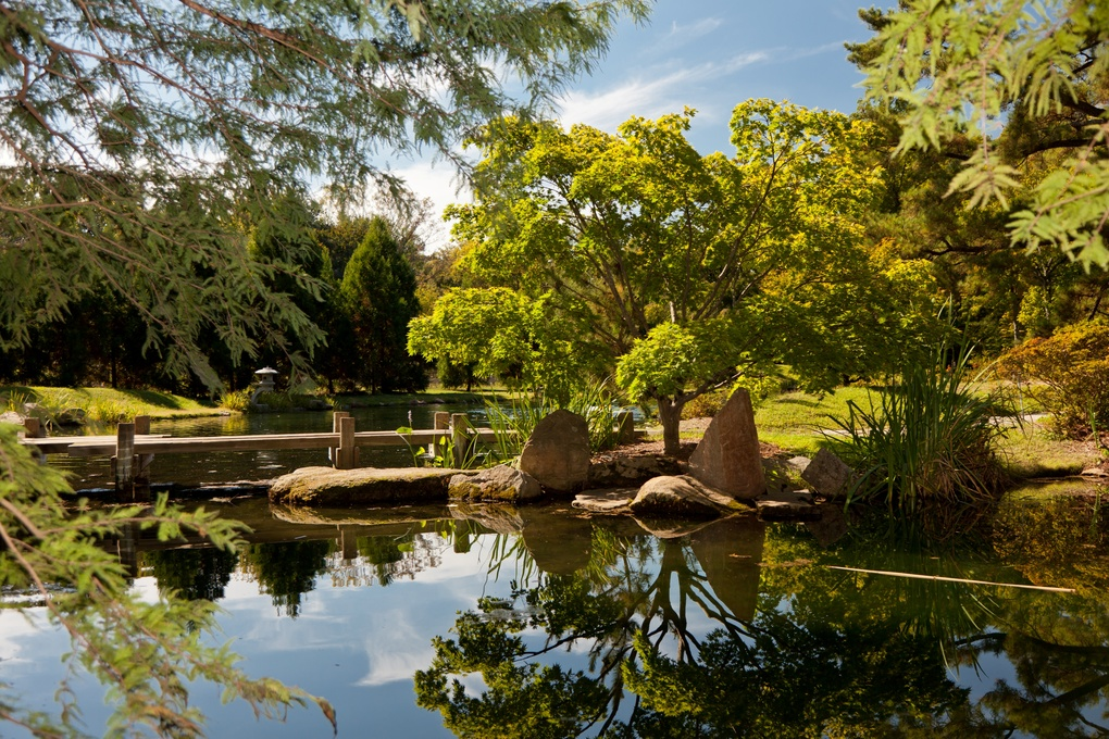 Japanese Gardens by Jason Meyer