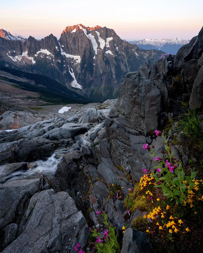 Glacial Stream Blossoms by Jesse Merz
