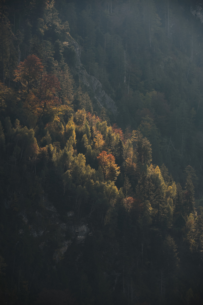 Mountain Light by Marvin Schweer